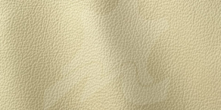 OCEAN COLLECTION Beige 402
