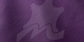 OCEAN COLLECTION Purple 451